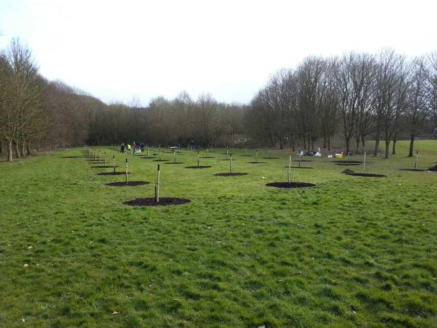 communityorchard